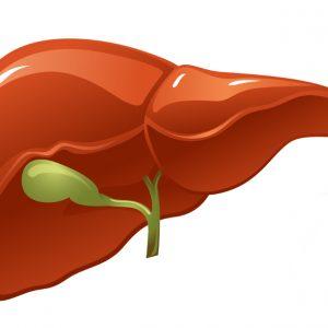 Hepatitt C